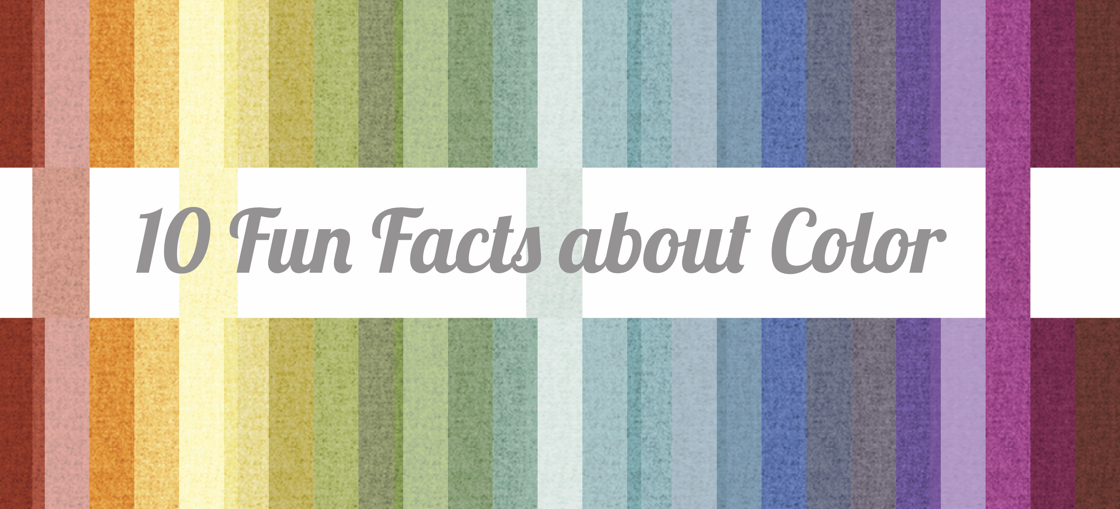 10 Fun Facts About Color Design Pool