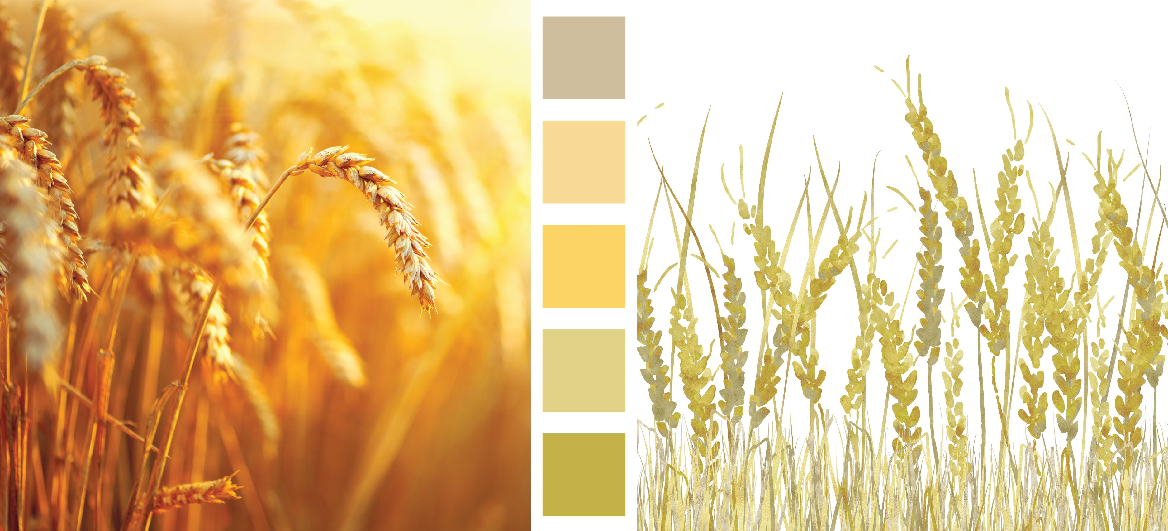 Earth Day Design and Color Inspiration Wheat Print