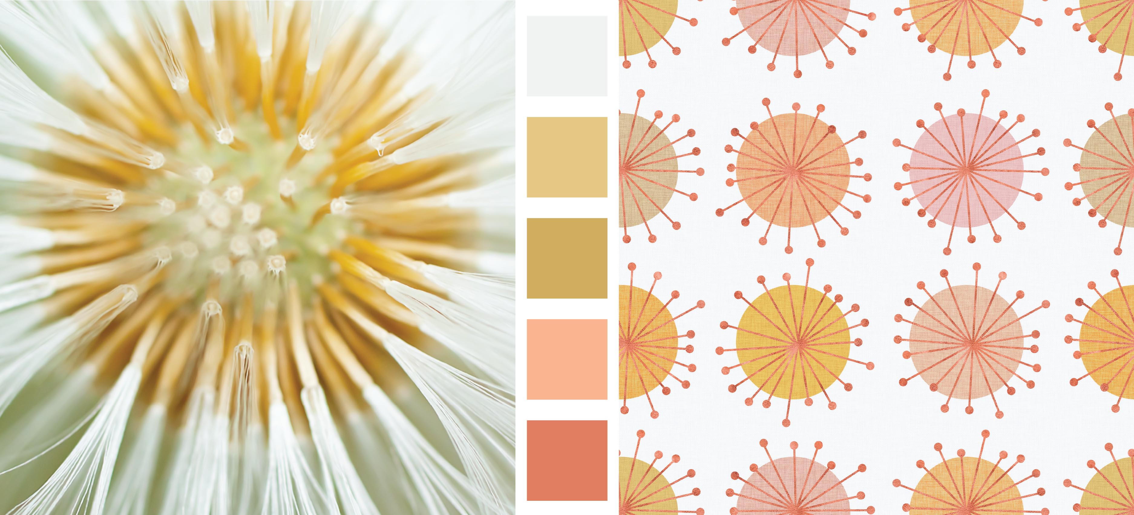 Earth Day Design and Color Inspiration Stylized Daisies